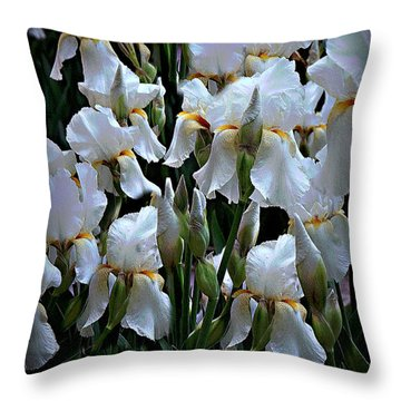 White Iris Garden Throw Pillow by Sherry Hallemeier
