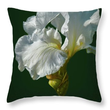 White Iris On Dark Green #g0 Throw Pillow