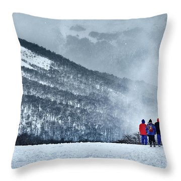 White Landscape In The Frozen Paradise In The Argentine Patagonia Throw Pillow