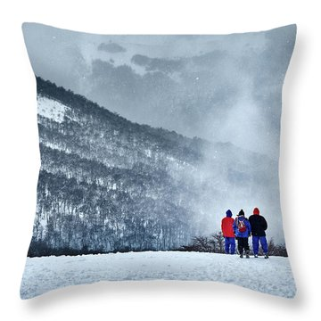 White Landscape In The Frozen Paradise Throw Pillow