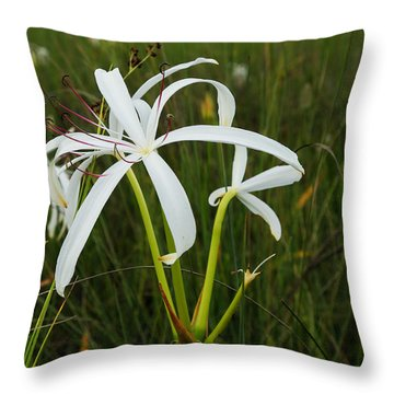 White Lilies In Bloom Throw Pillow by Christopher L Thomley