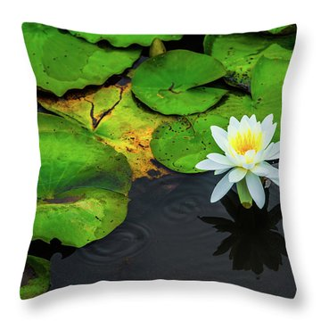 Throw Pillow featuring the photograph White Lily And Rippled Water by Dennis Dame