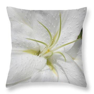 White Lily Throw Pillow by Lynne Guimond Sabean