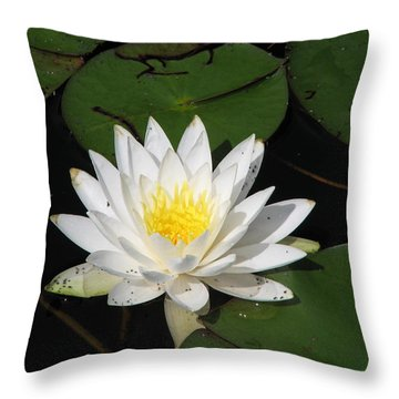 White Lily Pad Throw Pillow
