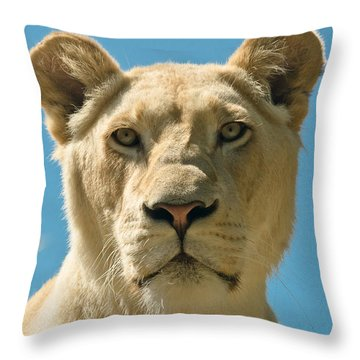 White Lion Throw Pillow by Scott Carruthers