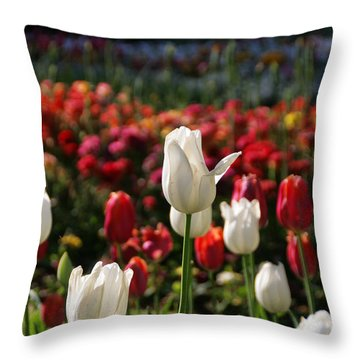 White Lit Tulips Throw Pillow