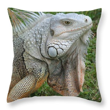 White Lizard Throw Pillow