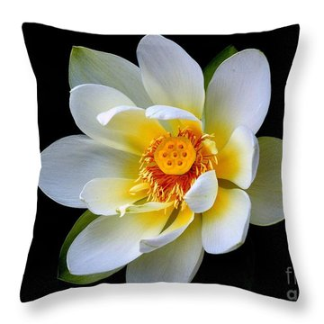 White Lotus Flower Throw Pillow