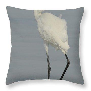 White Morph Reddish Egret  With Mullet Throw Pillow