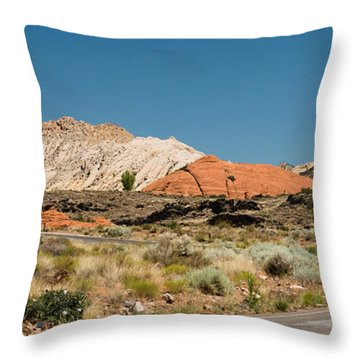 White Navajo Sandstone Petrified Sand Dune Throw Pillow by MaryJane Armstrong