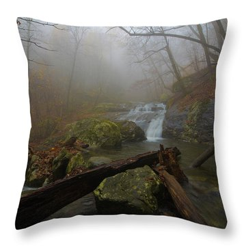 White Oak Canyon Safari Throw Pillow