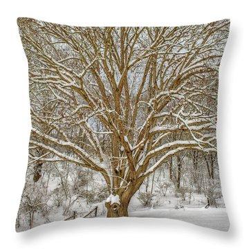 White Oak In Snow Throw Pillow
