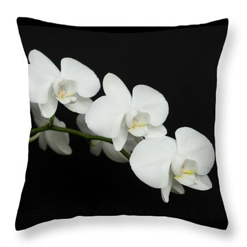 Throw Pillow featuring the photograph White On Black by Denise Bird