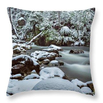 White On Green Throw Pillow