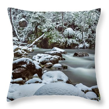 White On Green Throw Pillow