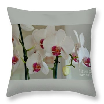 White Orchid Mothers Day Throw Pillow by Marsha Heiken