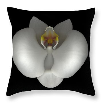 White Orchid On Black Throw Pillow by Heather Kirk