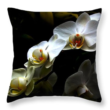 White Orchid With Dark Background Throw Pillow
