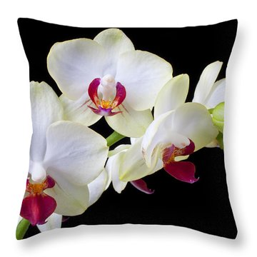 White Orchids Throw Pillow by Garry Gay