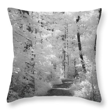 White Path Throw Pillow