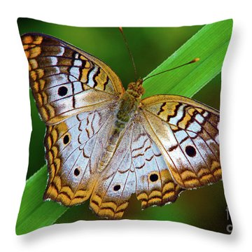 White Peacock Butterfly Throw Pillow