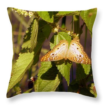 Throw Pillow featuring the photograph White Peacock Butterfly by Terri Mills
