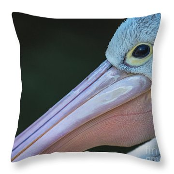 White Pelican Close Up Throw Pillow by Avalon Fine Art Photography