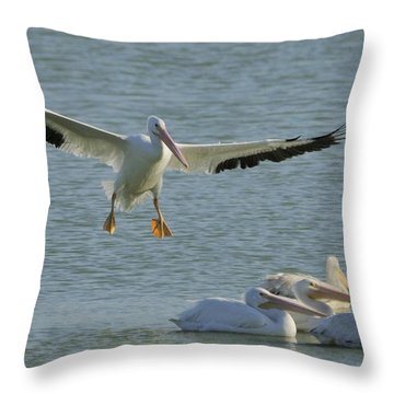 Throw Pillow featuring the photograph White Pelican Landing by Bradford Martin