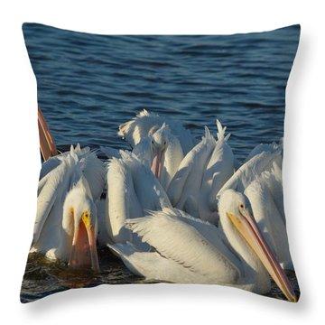 White Pelicans Flock Feeding Throw Pillow