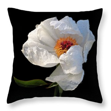 White Peony After The Rain Throw Pillow by Gill Billington
