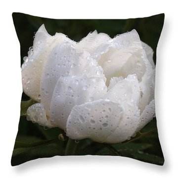 White Peony Covered In Raindrops Throw Pillow by Gill Billington