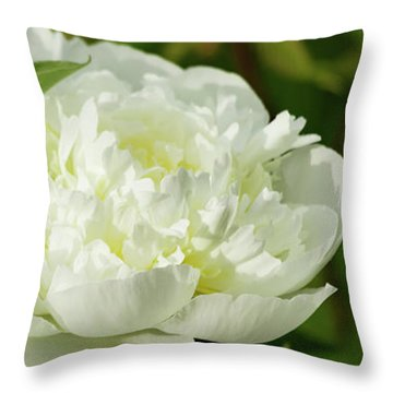 Throw Pillow featuring the photograph White Peony by Cristina Stefan