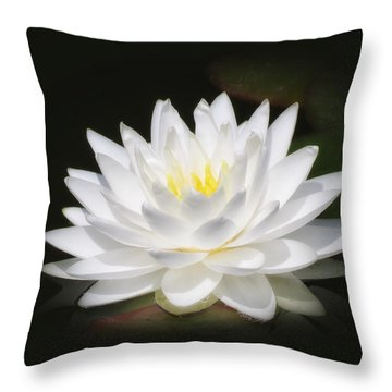 White Petals Glow - Water Lily Throw Pillow by MTBobbins Photography