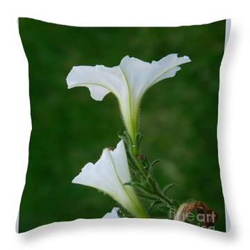 White Petunia Blossoms Throw Pillow