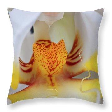 White Phalaenopsis Orchid 2 Throw Pillow