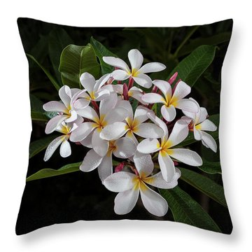 White Plumerias In Bloom Throw Pillow