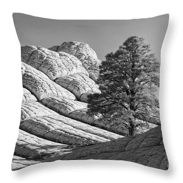 Throw Pillows Magnolia : White Pocket Photograph by Henk Meijer Photography