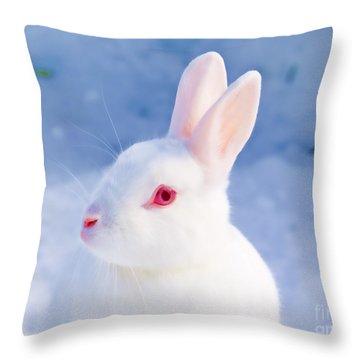 White Rabbit In Snow Throw Pillow