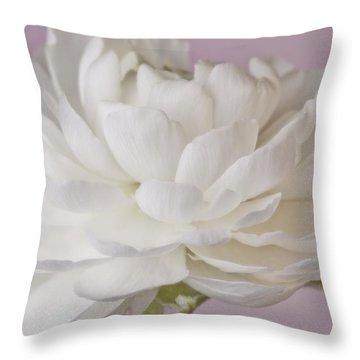 White Ranunculus Macro  Throw Pillow by Sandra Foster