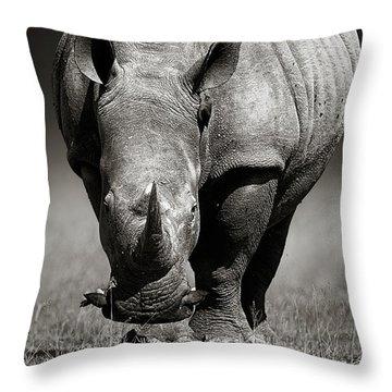 White Rhinoceros  In Due-tone Throw Pillow