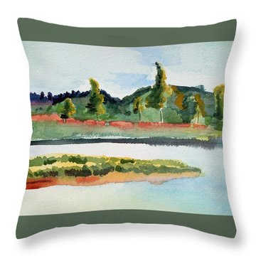 White River At Royalton After Edward Hopper Throw Pillow