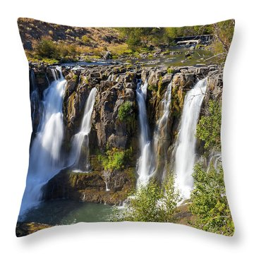 White River Falls In Tygh Valley Throw Pillow by David Gn