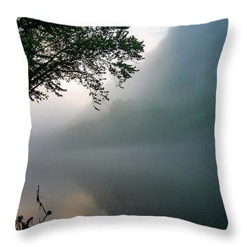 White River Morning Throw Pillow