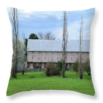 Throw Pillow featuring the photograph White Roof Barn by Emanuel Tanjala