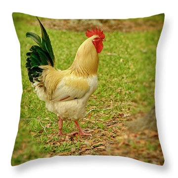 Throw Pillow featuring the photograph White Rooster by Charles McKelroy