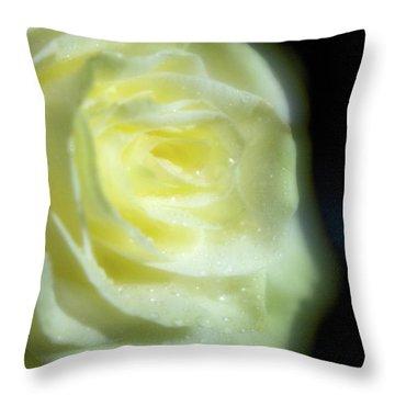 White Rose 4 Soft Throw Pillow