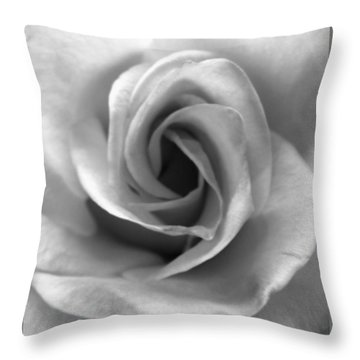 White Rose Throw Pillow by Beverly Johnson