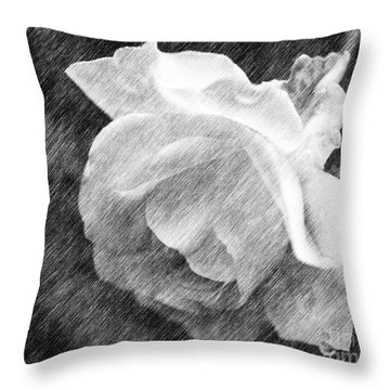 White Rose In Pencil Throw Pillow