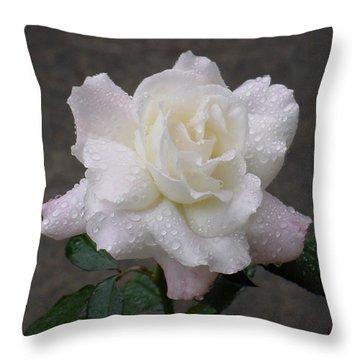 White Rose In Rain - 3 Throw Pillow
