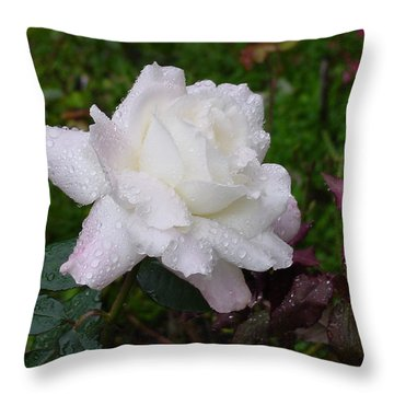 White Rose In Rain Throw Pillow by Shirley Heyn